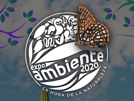Climate Kids Mexico Goes Virtual at Expo Ambiente 2020
