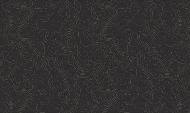 Topographic Map Pattern - Beige.jpg