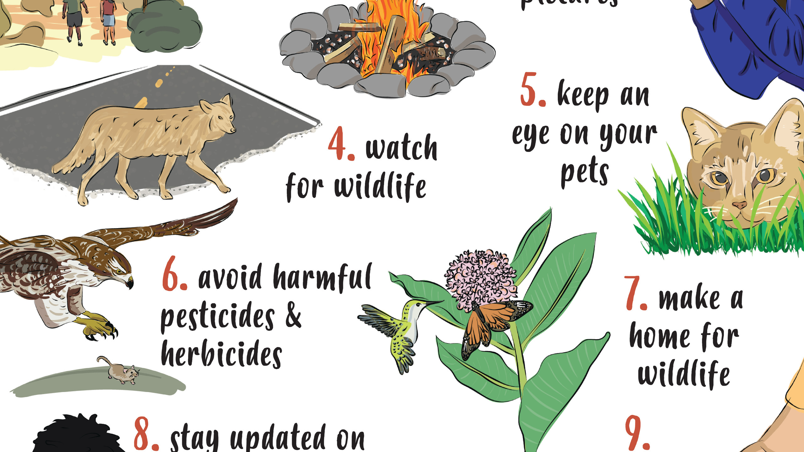 10 Things Wildlife Poster 2.4
