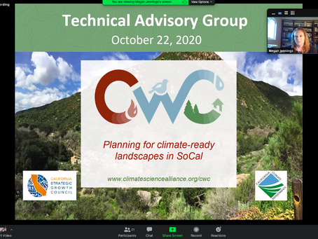 CWC Team Convenes Technical Advisory Group for Preliminary Product Feedback
