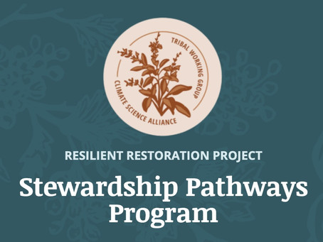Build a Career with the New Stewardship Pathways Program!