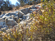 MissionTrailsFire-10.jpg