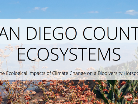 San Diego Ecosystems Assessment Story Map Highlights Climate Impacts to the Region