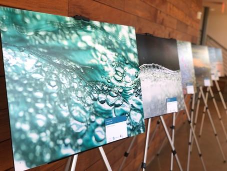 """Endangered Earth"" Art Exhibit Features Work From Affiliated Artist Nigella Hillgarth"