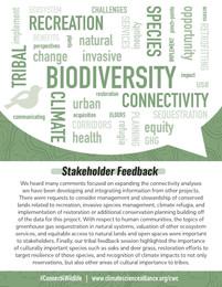 Biodiversity_wordcloud2.jpg