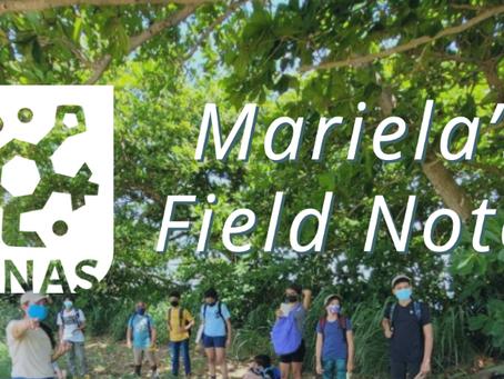 Mariela's Field Notes: Taller de inmersión 2021