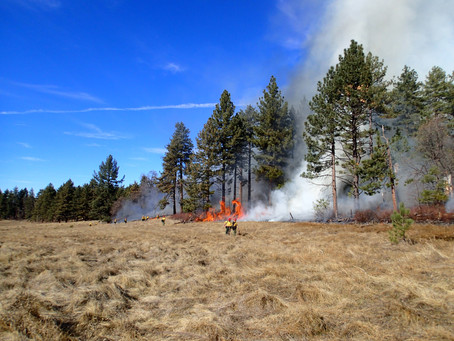 RSVP Today! Upcoming Nat Talk: Wildfire – A Tale of Two Backcountries on October 28th