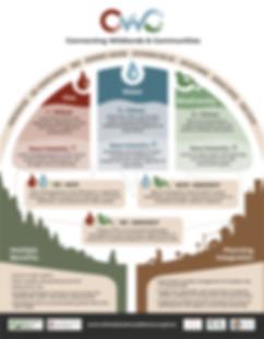 CWC_Infographic8.jpg