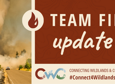 Update from CWC Project's Team Fire!