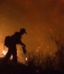 1024px-FEMA_-_33311_-_Fire_crew_member_f