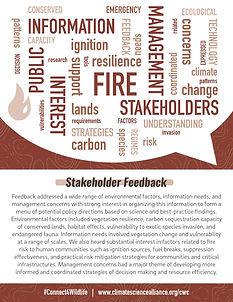 Fire_wordcloud.jpg