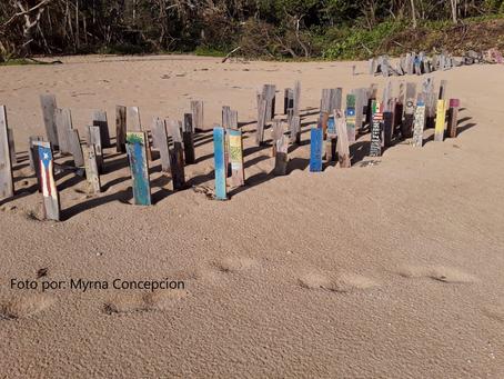 Mariela's Field Notes: Marejada de los Muertos 2019 Puerto Rico