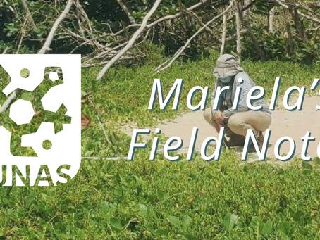 Mariela's Field Notes: De vuelta a la Duna #1
