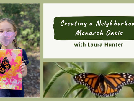 Partner Post: Creating a Neighborhood Monarch Oasis