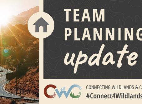 Update from CWC Project's Team Planning!