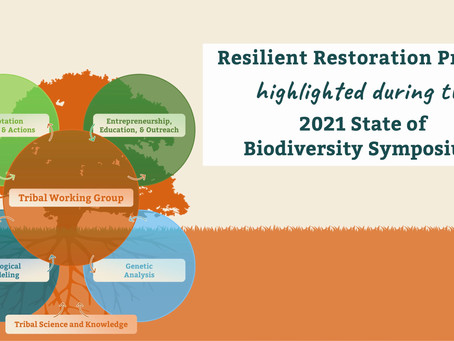 Resilient Restoration Project highlighted during the 2021 State of Biodiversity Symposium