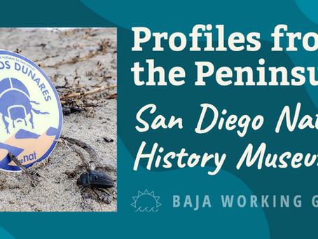 Profiles from the Peninsula - The San Diego Natural History Museum