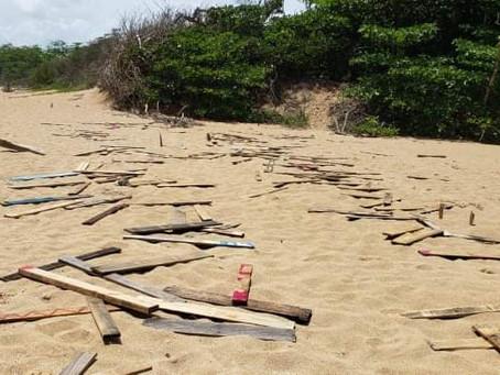 DUNAS Restoration Disrupted By Vandalism