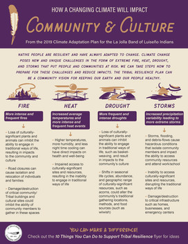 Summary One-Pager: Community & Culture