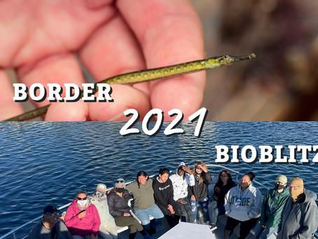 Climate Science Alliance Participates in 2021 Border Bioblitz