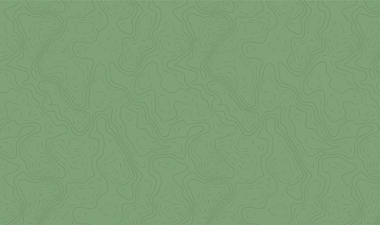 Topographic Map Pattern - Green2.jpg
