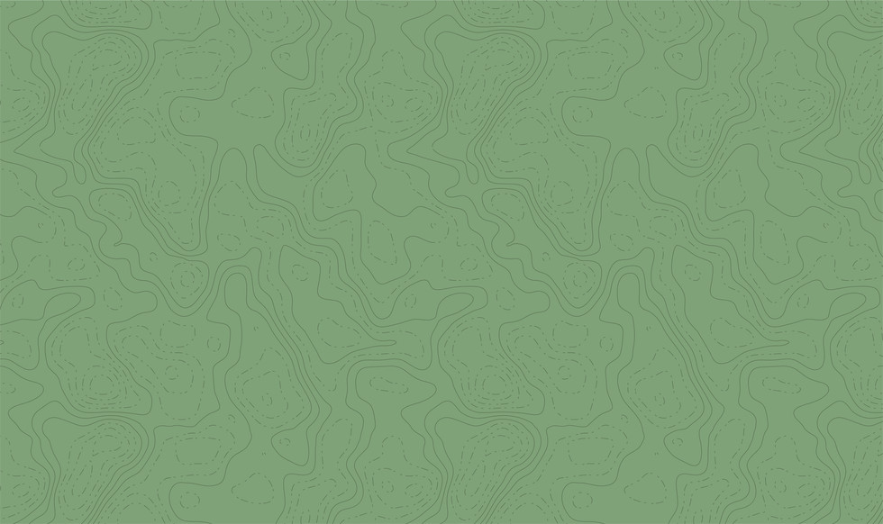 Topographic Map Pattern - Beige.jpg