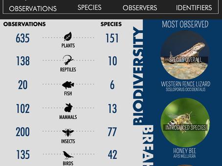 Cabrillo's Biodiversity Breakdown