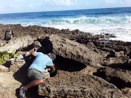 """""""Mar Amigo y Mar Nuestro"""": El cambio climático y el patrimonio arqueológico en proceso a ser sumergi"""