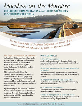 Project One-Pager: Marshes on the Margins