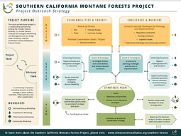 southernforests_infographic.png