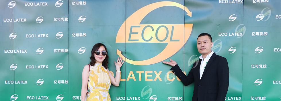 หมอนยางพารา อีโค่เลเท็กซ์ ECO LATEX