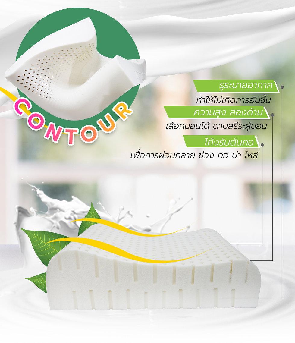 CURVE+CONTOUR_02.jpg
