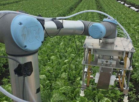The Agricultural Revolution begins with the help of AI and Robotics