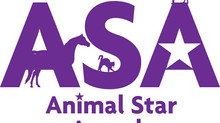 Animal Star Award Winners 2018