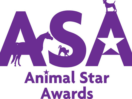 Animal Star Award Winners 2018