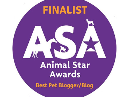 Animal Star Award Finalists 2021