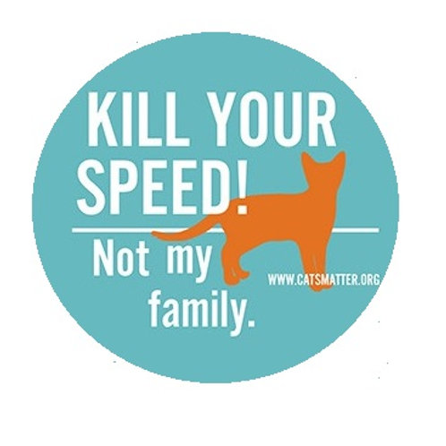 'Kill Your Speed' Outside sticker
