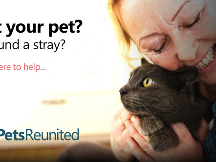 PetsReunited Pledges to make CatsMatter an Official Charity