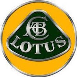 lotus - 500 nocturnes