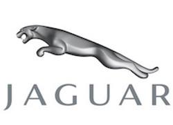 jaguar - 500 nocturnes