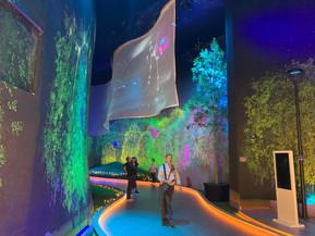 Выставка «Город Детали» завоевала награду на международном архитектурном конкурсе
