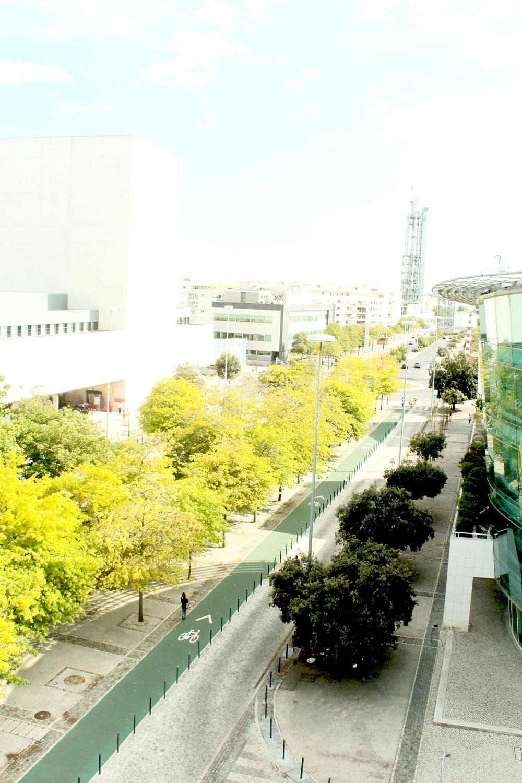 Avenue in Parque das Nacoes, Lisbon