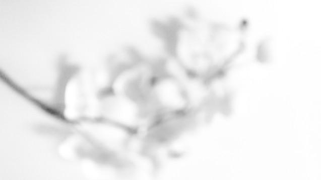 blurrystories-18_edited.jpg