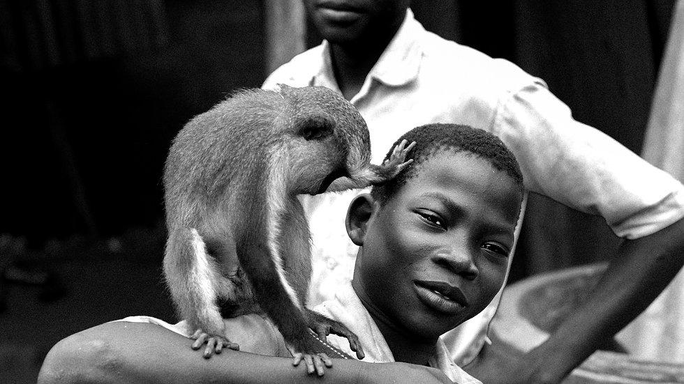The boy & The Monkey