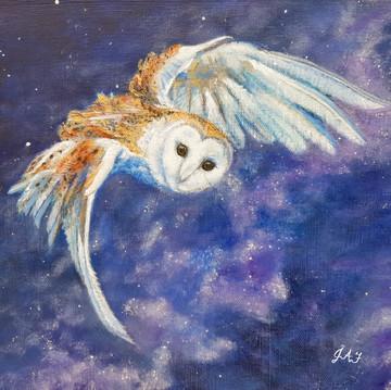 Milky Way Barn Owl