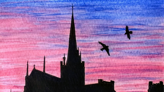 Chichester's Peregrines