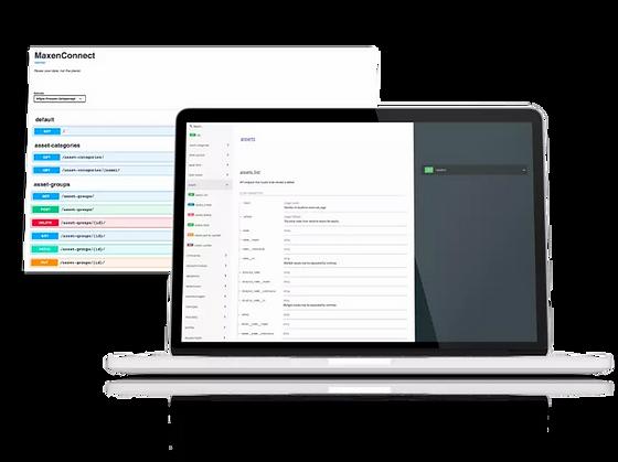 API maxen sur un écran d'ordinateur portable
