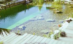 BAND Schwimmteich02