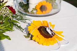 BAND_Hochzeit_6_31