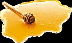 Med Dolní Břežany: prodej medu od včelaře  Prodej pravého českého medu od rodinného včelařství z Dolních Břežan od roku 1950. Lipový, akátový, květový, lesní medovicový a pastovaný med. Záruka vysoké kvality, každoroční certifikace. Osobní odběr nebo doručení. Volejte 776 092 977